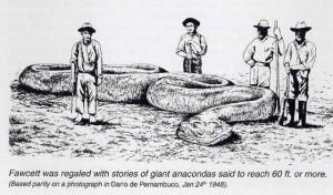 Explorer Fawcett giant snake