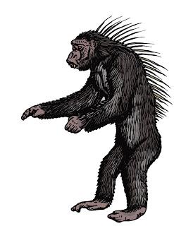 Spiny-Backed Chimpanzee, Tim Morris