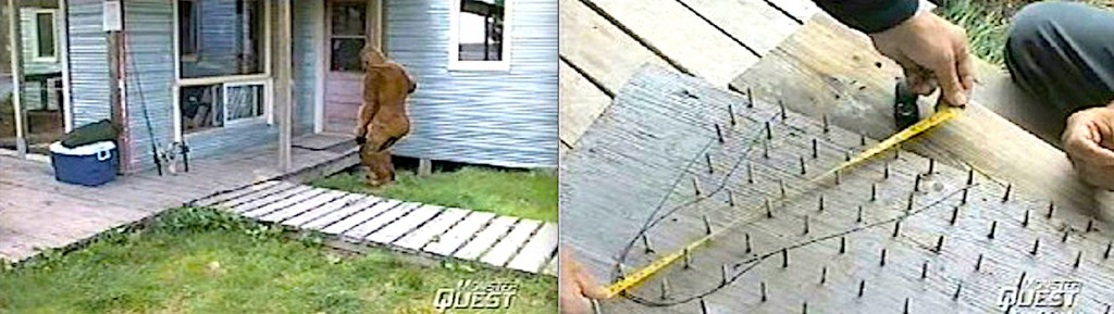 "10 Years Ago: Did ""Monster Quest"" Prove Bigfoot?"