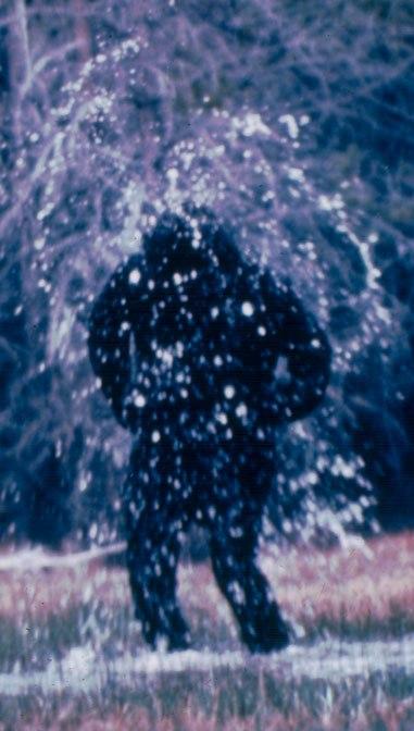 shower_close1