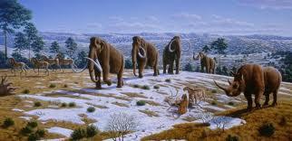 Pleistocene Extinction Expert Dies