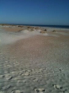 Beach2-225x300
