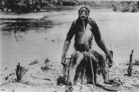 Loren Coleman's Top Ten Reasons For Cryptozoology Hoaxes