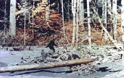 bigfoot_patterson01