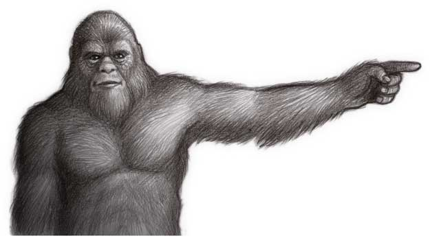 bigfoot black single men Bigfoot is described as a large, hairy, muscular, bipedal ape-like creature, roughly 2–3 metres (6 ft 7 in–9 ft 10 in) covered in hair described as black, dark brown, or dark reddish.