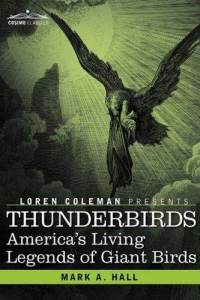 thunderbirds-americas-living-legends-giant-birds-mark-a-hall-hardcover-cover-art