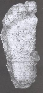 1958BluffCreekCrew