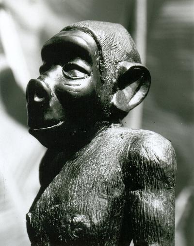 Agogwe1