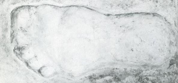 Fake Footprints Fill Bigfoot Books