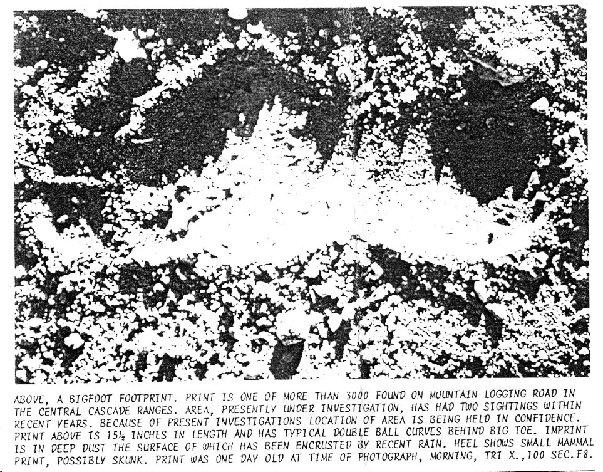 Newsletter1975PB