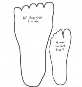 ruby_creek_footprint