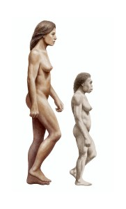 modern-human-and-homo-floresiensis-mauricio-anton