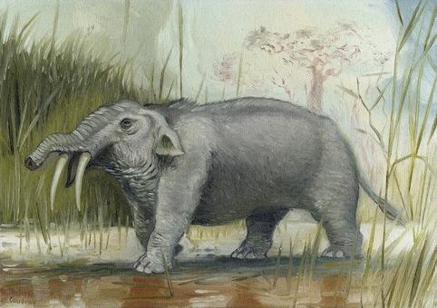peinture-elephant-inconnu