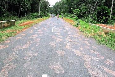 Johor2014-Road copy