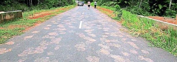 Road-Johor-2014