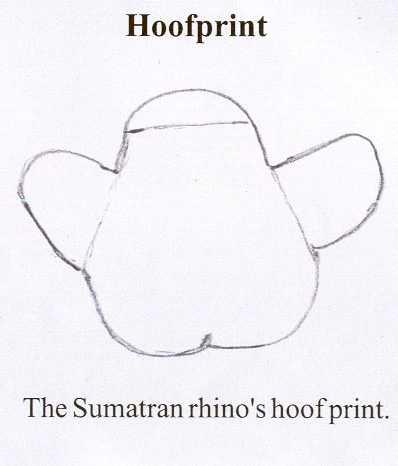 rhinohoofprint