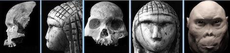 Red Deer Cave Brassempuoy Homo rudolfensis
