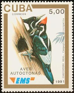 cub199105l