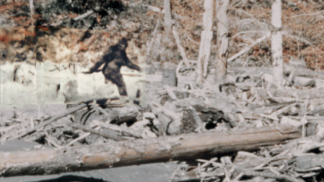 Patterson-Gimlin Bigfoot Anniversary Synchronicities