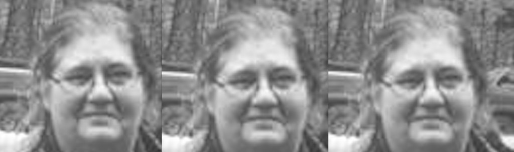 Tennessee Bigfooter Mary Green Dies