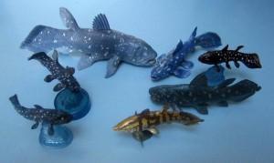 Coelacanths-6