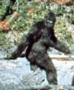 patterson-bigfoot-tm