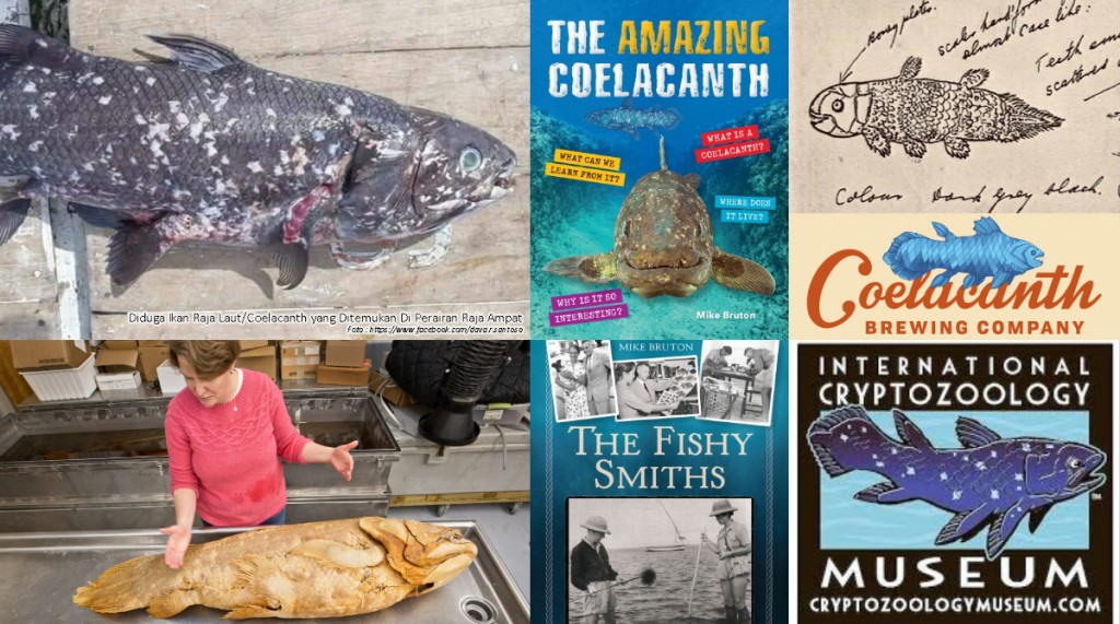 Top 8 Coelacanth Stories of 2018
