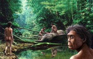 homo-floresiensis-mauricio-antonscience-photo-library
