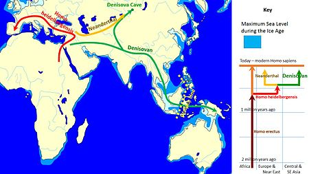 Spread_and_evolution_of_Denisovans