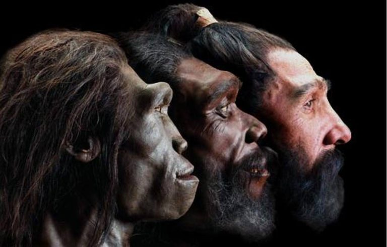 neanderthals-bred-with-denisovans