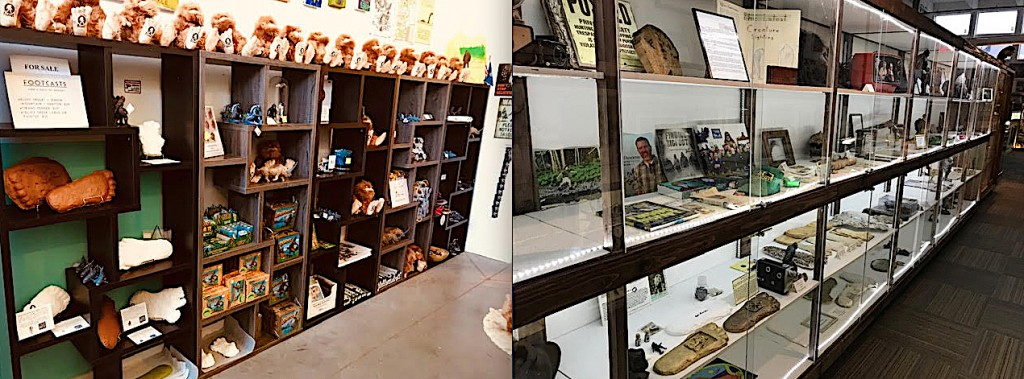 International Cryptozoology Museum: Renovations 2019