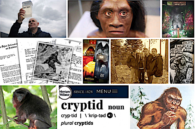 The Top Ten Cryptozoology Stories of 2019