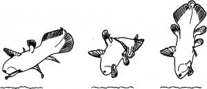 16-Figure19-1